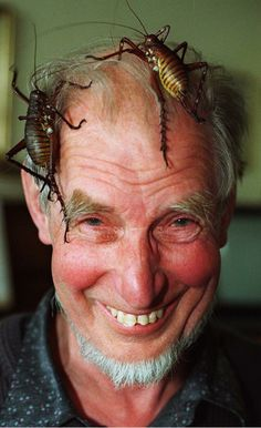 Retired entomologist Graeme Ramsay shows two of his native New Zealand 'Weta' insects