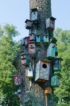 Colorful Bird Houses Nest Box Hang On Old Big Tree Trunk Royalty Free Stock Photo, Pictures, Images And Stock Photography. Image 15641508.