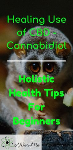 Top 8 Benefits of CBD - Cannabidiol Holistic Health Tips for Beginners Wound Healing, Healing Herbs, Medicinal Herbs, Natural Healing, Insomnia Remedies, Smoking Cessation, Natural Health Tips, Natural Home Remedies, Pain Relief