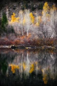 Photographic Print: Autumn Reflection by Ursula Abresch : Beautiful World, Beautiful Places, Foto Nature, Cool Pictures, Beautiful Pictures, Autumn Scenes, Abstract Watercolor, Nature Photos, Beautiful Landscapes