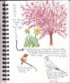 beautiful nature journal page