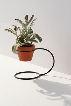 Urban Outfitters NewMade LA For Standing Planter House Plants Decor, Plant Decor, Metal Furniture, Garden Furniture, Indoor Garden, Indoor Plants, Metal Plant Stand, Pot Plante, Flower Stands