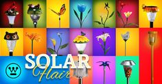 It's the Summer Solstice. Time to shine a light on your garden with new solar lights.