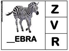 ZEE.jpg (884×662)