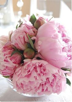 Using fresh flowers, such as Peonies, make a home so fresh and inviting. My Flower, Flower Vases, Fresh Flowers, Pretty In Pink, Pink Flowers, Beautiful Flowers, Cactus Flower, Exotic Flowers, Yellow Roses