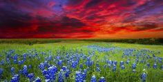 Ennis, Texas - Picture by Dean_Fikar/Dean_Fikar   15 Tiny Texas Towns That Are Totally Worth The Trip