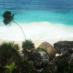 Paradise 🌴