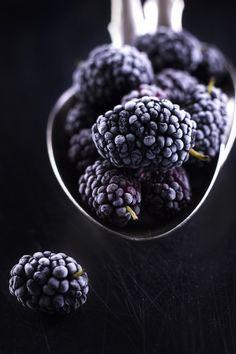 worlds-evolution: Berries by Tatyana Saprykina