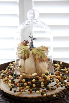 Fall Decorating with a glass cloche - can easily be used for other holidays too!