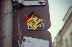 Beardie Type :: Dresden