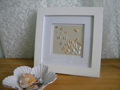 Coquina Framed Shell Art Taking a Different Path via Etsy
