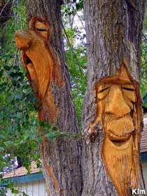 Trees have great faces.