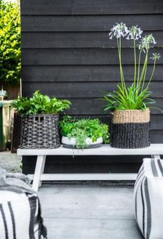 50 Brilliant Front Garden and Landscaping Projects You'll Love - The Trending House Back Gardens, Small Gardens, Outdoor Gardens, Modern Garden Design, Contemporary Garden, Dream Garden, Home And Garden, Skandinavisch Modern, Garden Signs