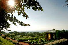 A president's garden in honor of presidents day - thomas jefferson garden