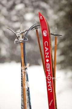Die 35 besten Bilder zu Ski Langlauf | Langlauf, Skilanglauf