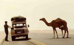 Defender Oman 1980s