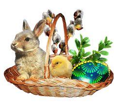 GIFS HERMOSOS: huevos motivos de pascua encontrados en la web Easter Pictures, Holiday Pictures, Gifs, Ostern Wallpaper, Happy Easter Wishes, Recycled Paper Crafts, Holiday Gif, Easter Parade, Easter Art