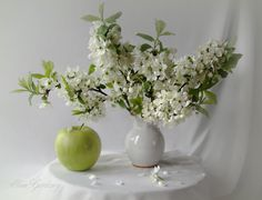 Fotografia Flowering blackthorn and apple de Elen Gardzey na 500px