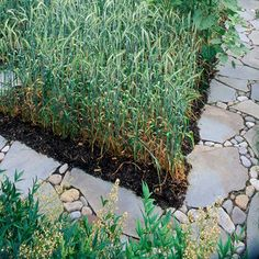 Simple Walkway  Mixed-material paths needn't be complex. Flagstone steppers set on the ground with small stones between them make a simple, effective path.