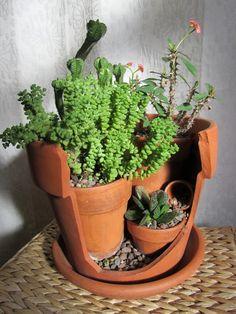 broken pot garden