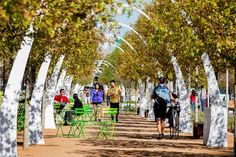 Does The New Klyde Warren Park in Dallas, Bridge the Gap to a Greener City?