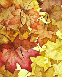 Fall Maple Leaves Painting by Christina Meeusen - Fall Maple Leaves Fine Art Prints and Posters for Sale