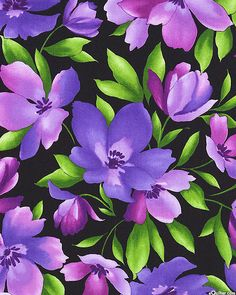 Catalina Ultra Violet - Summertime Blossoms - Quilt Fabrics from www.eQuilter.com