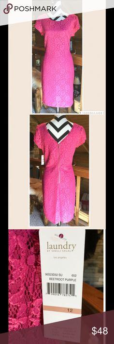 🌺Beautiful Lace Fuchsia Dress 🌺 NWT Sz 12 Gorgeous! Lace! V-zip up back, NEW, NEVER worn!! Size 12 Laundry by Shelli Segal Dresses