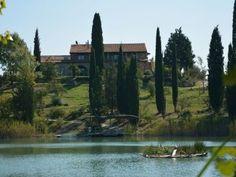 Veduta del Lago. #panorama #lago #veduta #relax #cosebelle #benessere #toscana #relais #villa #ariaaperta