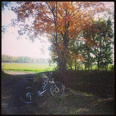Dieter's Radtouren: 14.10.13 - Pellendorf