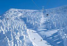 スノーモンスター出現時期真っ只中!一度は見に行きたい「蔵王の樹氷」!   RETRIP