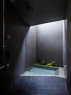 Bathroom skylight with shower and sunken bath. Really like the way the skylight highlights the water.