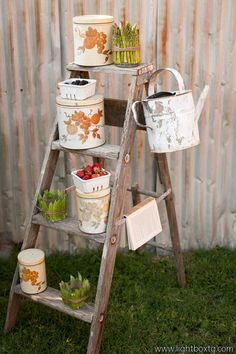 Cool idea that you could use for lots of different things!  step ladder #rustic decor