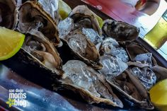 Oyster Hour? Yes, Please! San Diego's Top 3 Dollar Oyster Nights