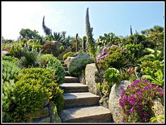 minack theatre gardens - Google Search