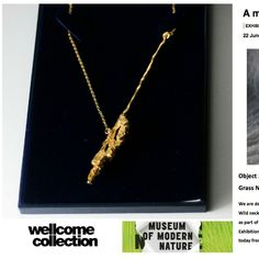 Its the last week to catch the Golden Wild Grass necklace at the Wellcome Collection. If you havent visited 'A Modern Museum of Nature' exhibition I would highly recommend it - a poignant and colourful narrative sharing personal relationships with nature.