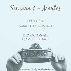 MARTES - Semana 1 Lectura #ElreyDavid #Salmos #DavidBiblia #AmaADiosGrandemente #LGG #Devocional #Estudiobiblicoenlinea #Estudiobiblicoparamujeres #Dios #ComunidadADG