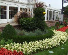 Topiary Garden, Topiary Trees, Patio Trees, Chicken Garden, Growing Greens, Tree Carving, Farm Gardens, Outdoor Art, Tree Art