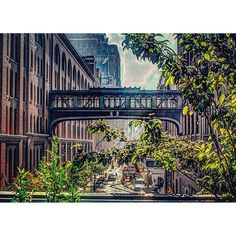 """View from the High Line in NYC. Photo taken by @ihadaphotograph on Instagram…"