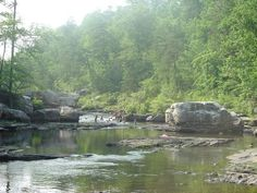 Little River Canyon National Preserve near Fort Payne offers forests, waterfalls, sandstone cliffs and the canyon that gives the park its name.