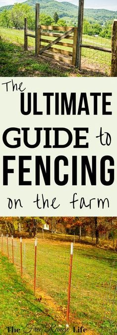 With all the choices, it can be hard to decide which of the fence options best fit your needs. Get to 411 on all your fencing options and make an informed decision.