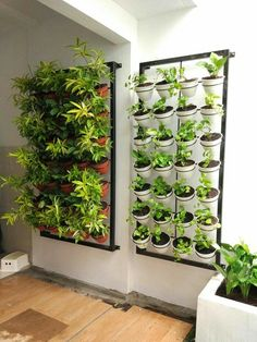 40 Trendy Vertical Garden Design Ideas To Make Your Home Fresh Additional the plan of the garden has to be capable of holding the plants. You also need to have plants situated in a place that's easily accessible to water. A vertical vegetable garden is s… Vertical Garden Design, Vegetable Garden Design, Indoor Vertical Gardens, Vertikal Garden, Small Balcony Garden, Walled Garden, House Plants Decor, Interior Garden, Garden Projects