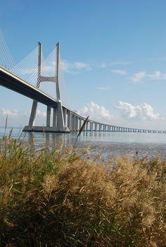 A Ponte Vasco da Gama é uma ponte atirantada sobre o estuário do rio Tejo, na área da Grande Lisboa, ligando Montijo e Alcochete a Lisboa e Sacavém, muito próximo do Parque das Nações, onde se realizou a Expo 98. Com os seus 12,3 km de comprimento, a ponte é a mais longa da Europa e uma das mais extensas do mundo. Foi inaugurada em 29 de Março de 1998.
