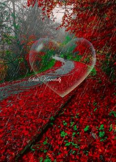 Chuva de amor Wallpaper Nature Flowers, Flowers Gif, Love Wallpaper, Cross Pictures, Love Pictures, Nature Pictures, Rain Days, Heart Gif, Love You Images