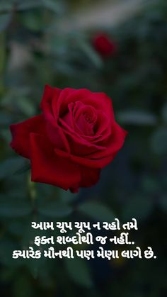 Gujarati Quotes, Love Life, Origami, Knowledge, Thoughts, Feelings, Flowers, Lashes, Origami Paper