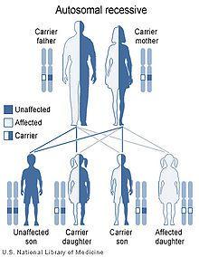 Dihydropyrimidine dehydrogenase deficiency - Wikipedia, the free encyclopedia