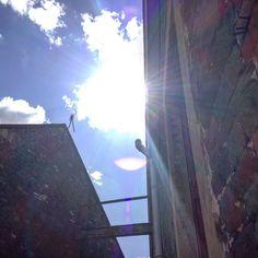 Suns out  #simpleprintstudio #handprinted #screenprinting #sunshine by simpleprintstudio