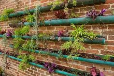Vertikal Garten Design-waagerechte-lange Pflanzengefäße-angehängt