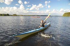 Naturaktivitäten in #Mikkeli - show - Rundreisen #Finnland Seen, Arctic, Kayaking, Boat, Awesome, Beautiful, Finland, Environment, Nature