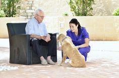 La terapia psicoestimulativa con animales incrementa el bienestar físico y mental de las personas mayores